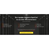 Виртуальный хостинг AdminVPS из категории Хостинг-провайдеры для CMS OpenCart (ОпенКарт) фото 1