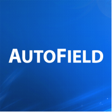 AutoField - автозаполнение и групповая обработка полей товаров