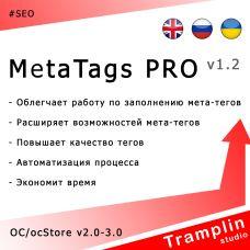 TS MetaTags PRO