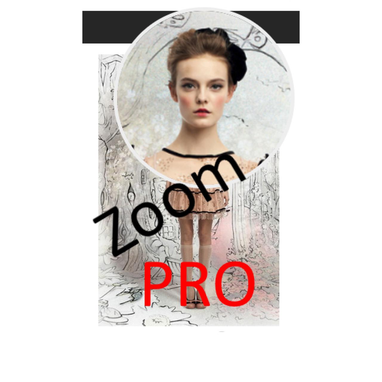 Модуль зуммирования изображений товара - ZoomPRO  из категории Оформление для CMS OpenCart (ОпенКарт)