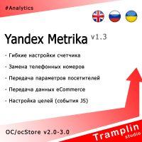TS Yandex Metrika